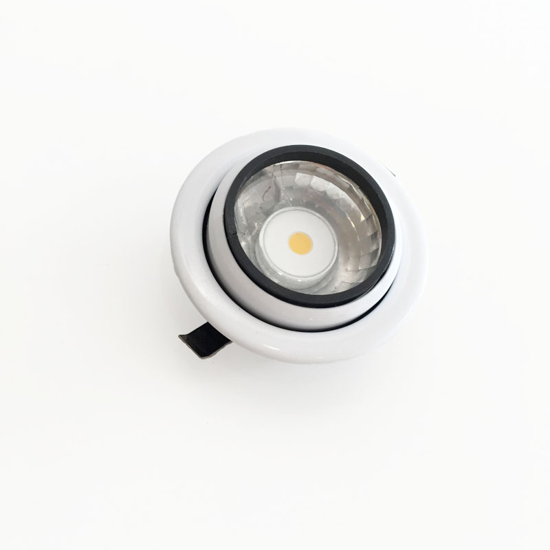 LED downlight tiltbar